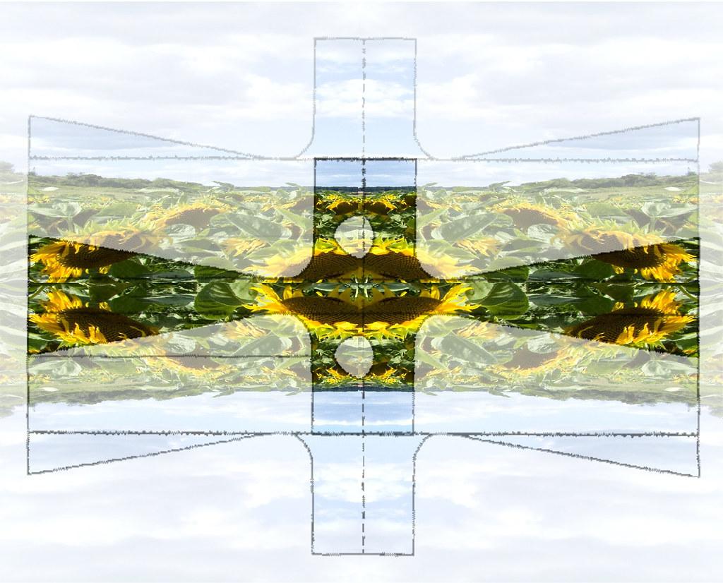 Kimono Sunflowers Sky Mirror Schnittmuster Sonnenblumen Hi… | Flickr