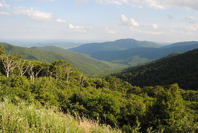 Pinnacles - Shenandoah National Park