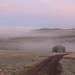 Nebel im Spessart