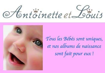 album de naissance personnalisable album de naissance pers flickr. Black Bedroom Furniture Sets. Home Design Ideas