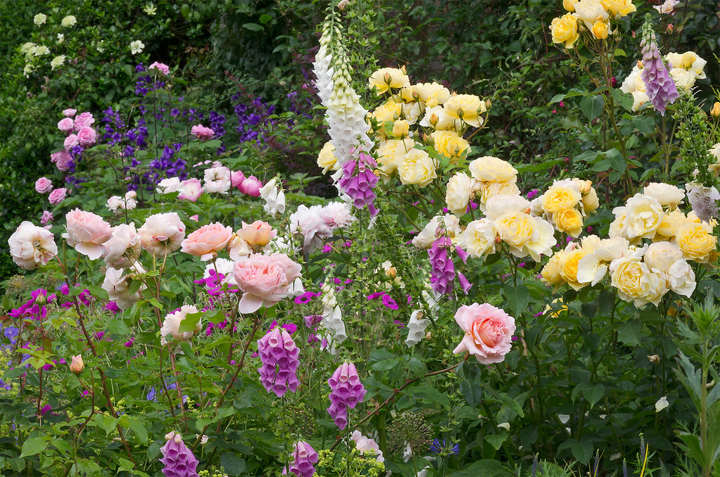 Cottage Garden Borders Bedfordshire UK