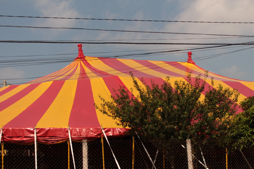 Atividades no Circo Escola Grajaú