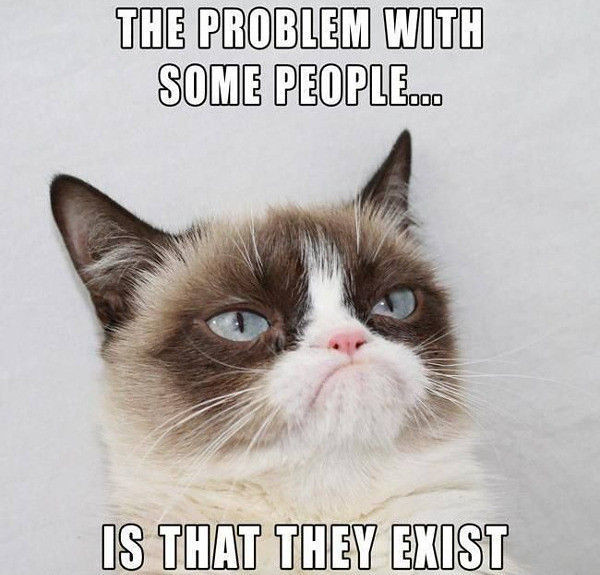 Funniest Meme In Existence : Grumpy cat dislikes your existence mbinge vf q