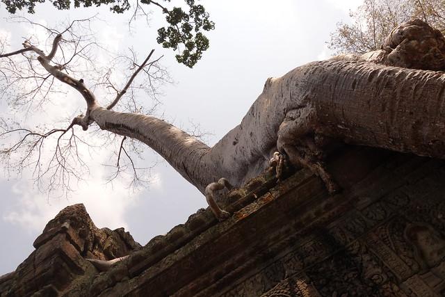 Preah Khan / Temples d'Angkor
