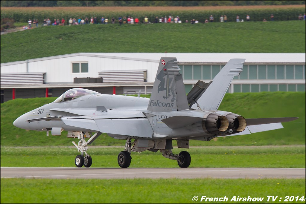 Swiss Hornet Display Team , F/A 18 Hornet , Forces Aériennes Suisse F18 Hornet aerobatic , AIR14 Payerne , suisse , weekend 1 , AIR14 airshow , meeting aerien 2014 , Airshow