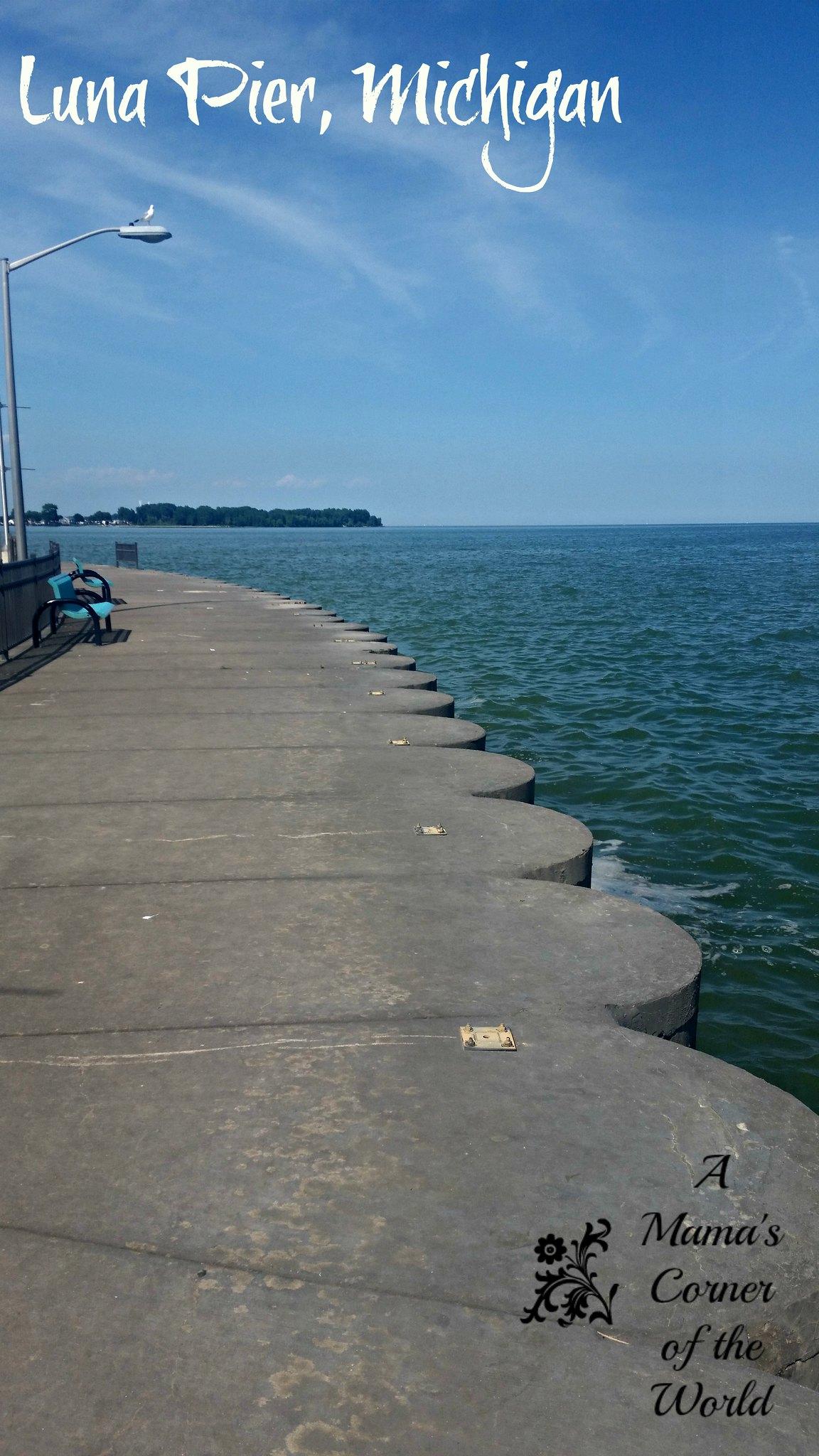 Luna Pier MI 3
