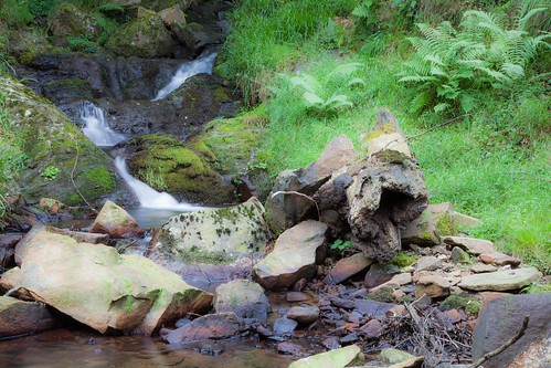 Parque Natural de #Gorbeia #DePaseoConLarri #Flickr - -7963