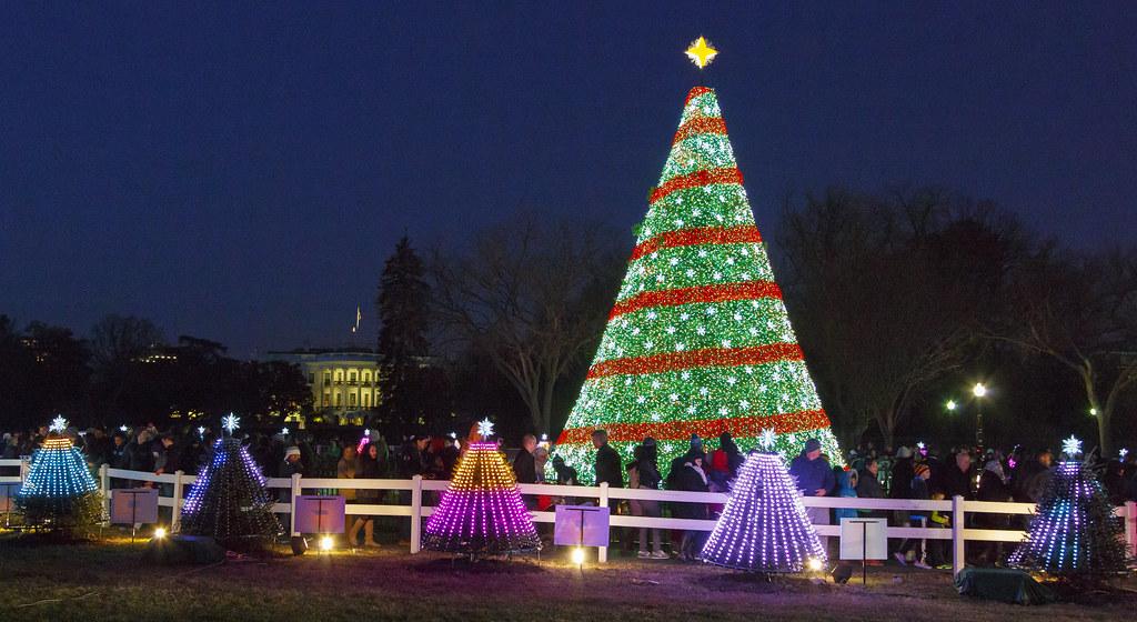 washington dc by richard ricciardi washington dc by richard ricciardi - Washington Dc Christmas Tree