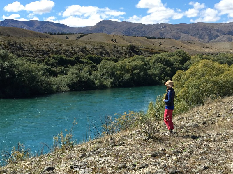 overlooking the clutha river near the village of wanaka