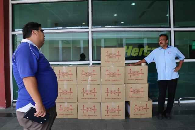 GIFT boxes at Alor Setar airport, Malaysia. Kate Bevitt, 2016.