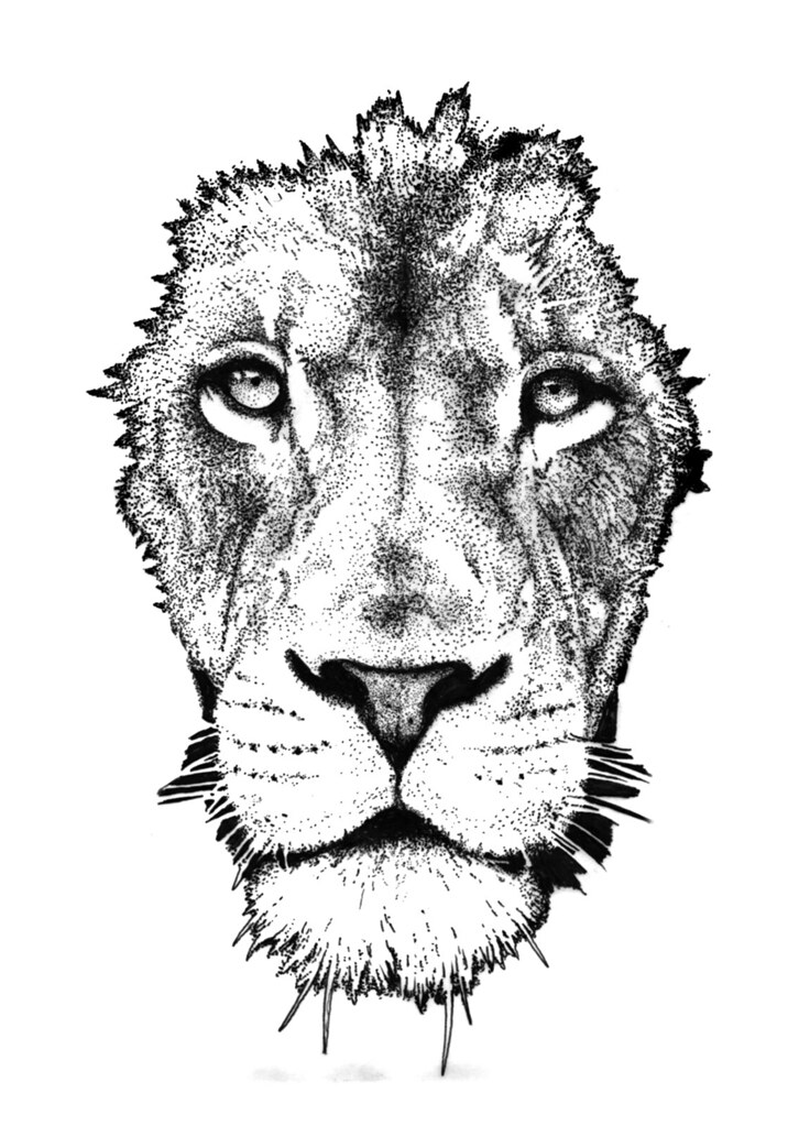 Lion Igor Frumin Flickr