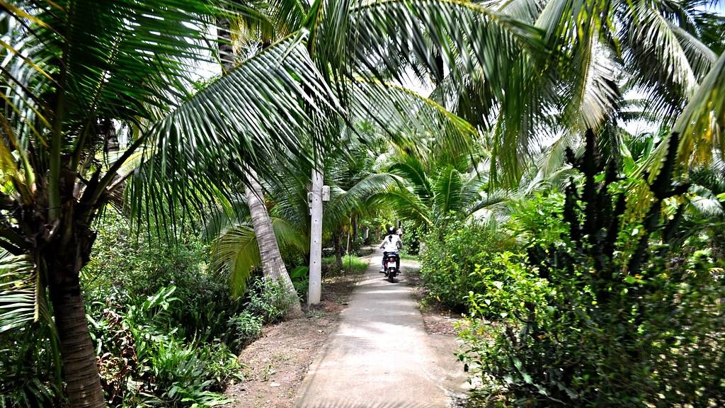 Coconut Island Tour