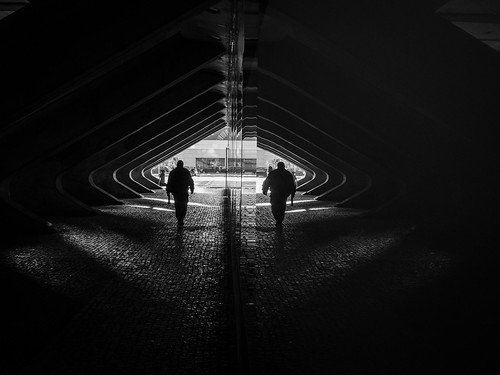 Tunnel of Shadows | by pedroalves44