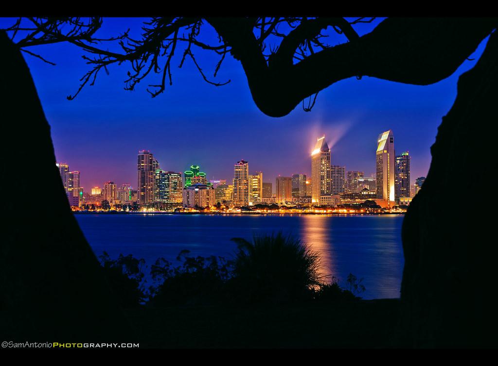 Downtown San Diego Skyline From Bay View Park In Coronado