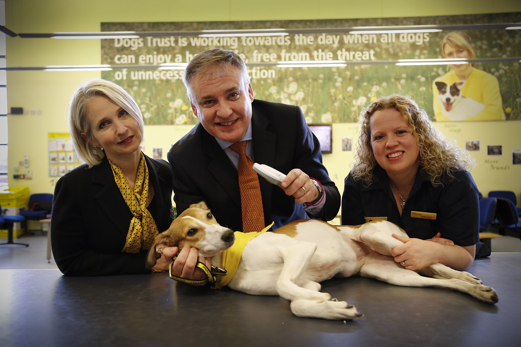 Dogs Trust Chatity Sales Bonuses