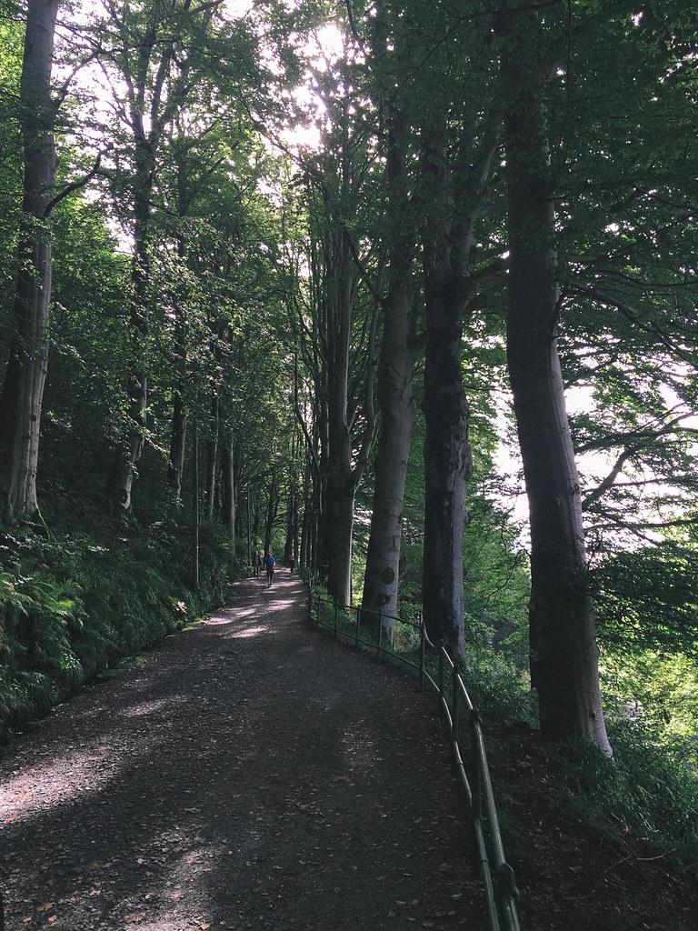 stroll-8