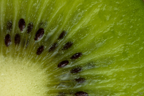Kiwi (MM: Fill-the-frame with food) [explored] | Thank you ...