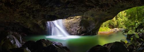Natural Bridge Springbrook National Park Glow Worms Cave Springbrook Qld
