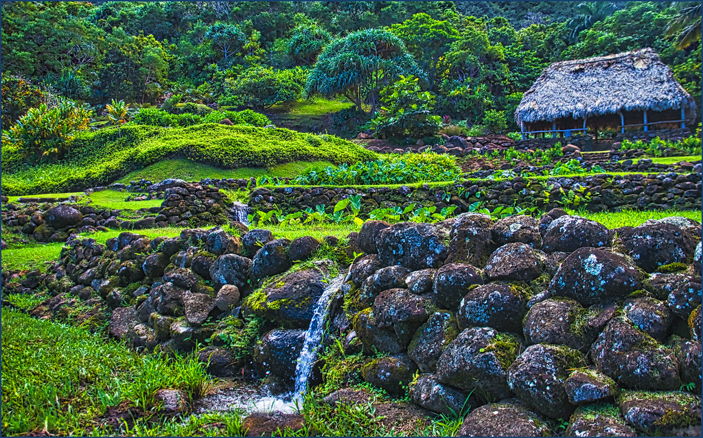 Hut and Terraced Taro Fields-- Limahuli Garden and Preserv… | Flickr