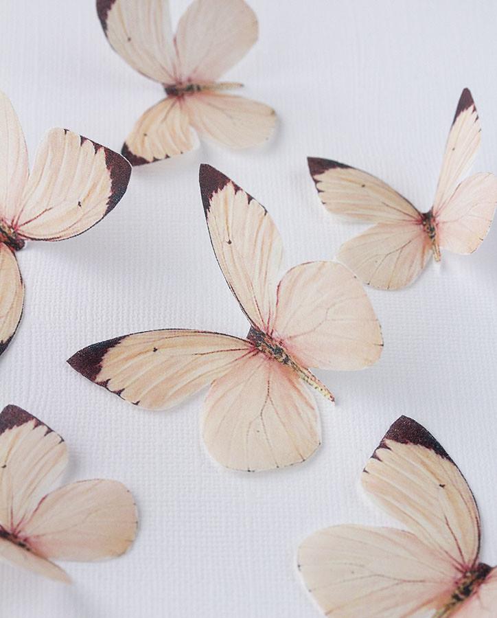 Mariposas de oblea
