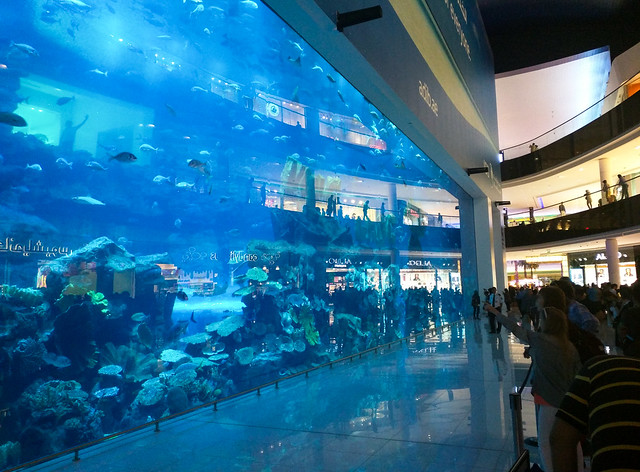 an aquarium inside a mall