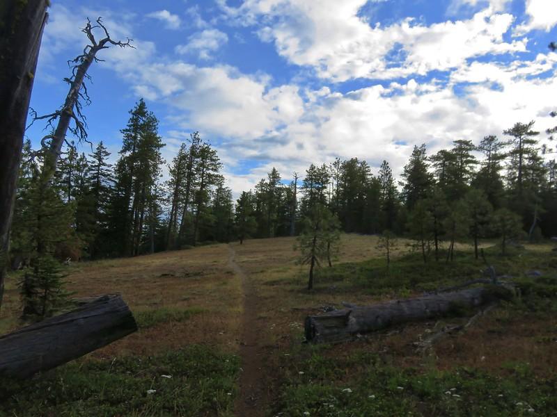 Cedar Creek Trail