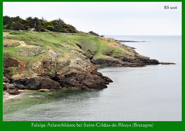 Bretagne 2016 - Spazierweg am Atlantik - Saint-Gildas-de-Rhuys - Meeresblicke - Natur - Botanik - Wildpflanzen - Fotos: Brigitte Stolle 2016