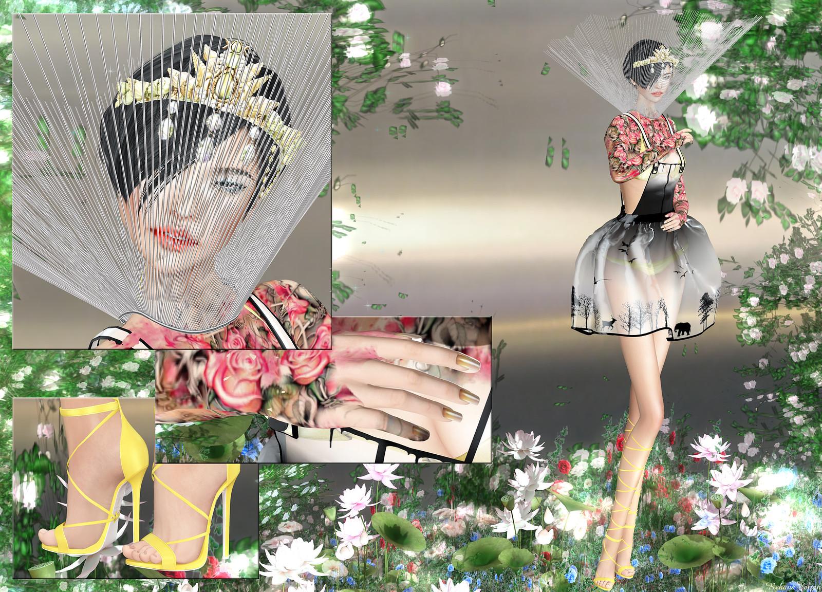 Carol G - Lovely Roses