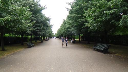 Regent's Park The Avenues July 16 (5)