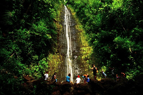 Manoa Falls | by Edmund Garman