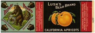 California apricots label, Lusk's Bear Brand, Lehmann Printing and Lithographing Co. | by California Historical Society Digital Collection