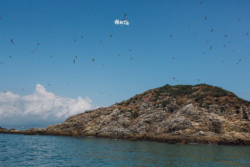 5|嚴禁船隻靠近甚至登島的燕鷗保護區