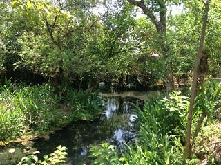 柯林第一湧泉池入口處。攝影:廖靜蕙