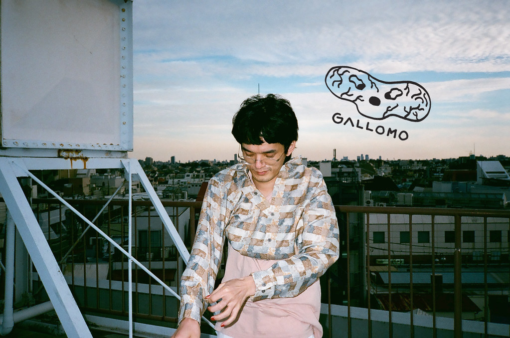 www.gallomo.com