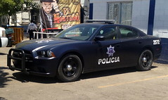 Culiacán federal police car