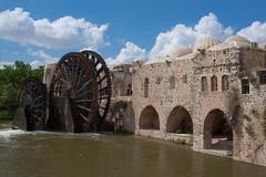 Norias of Hama