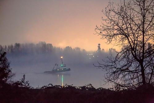 Night Fog IMG_5531-3