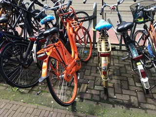 Amsterdam July 2016 | by Palm Beach Cycle Chic
