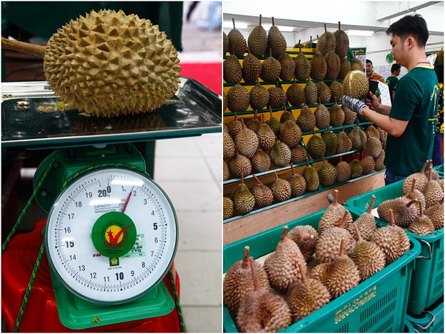 Picking Durian