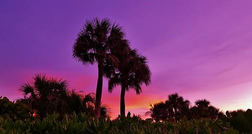 Hutchinson Beach Florida