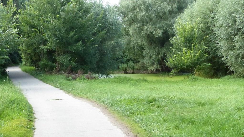 Bei Hamm am Rhein