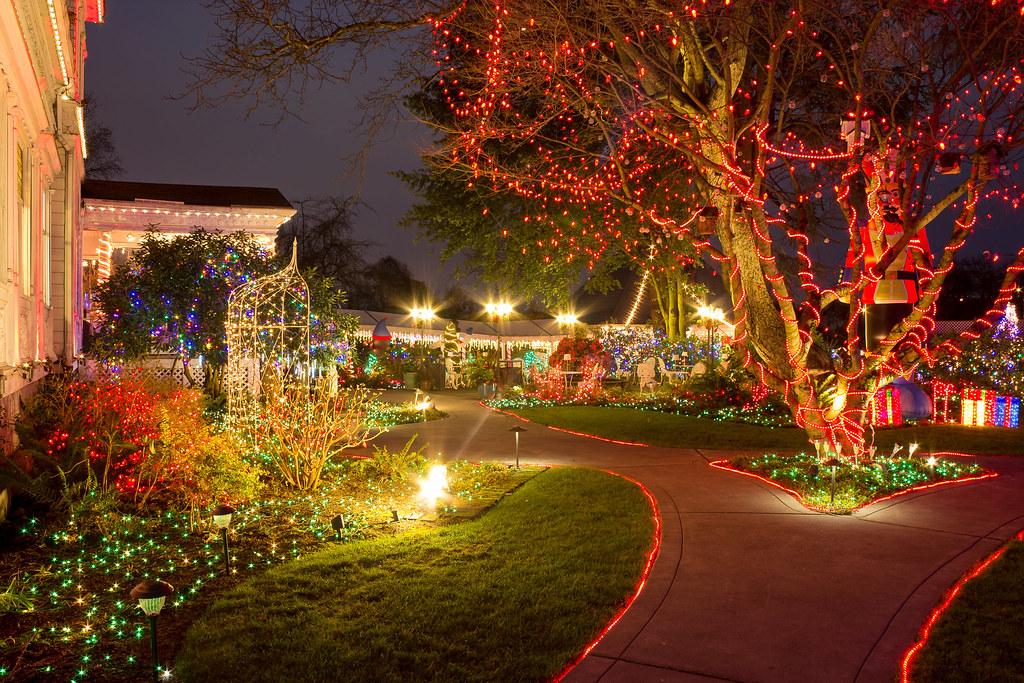 Christmas lights   by Victoria Ditkovsky Christmas lights   by Victoria  Ditkovsky - Christmas Lights Portland, Oregon, Victorian Belle Park Victoria