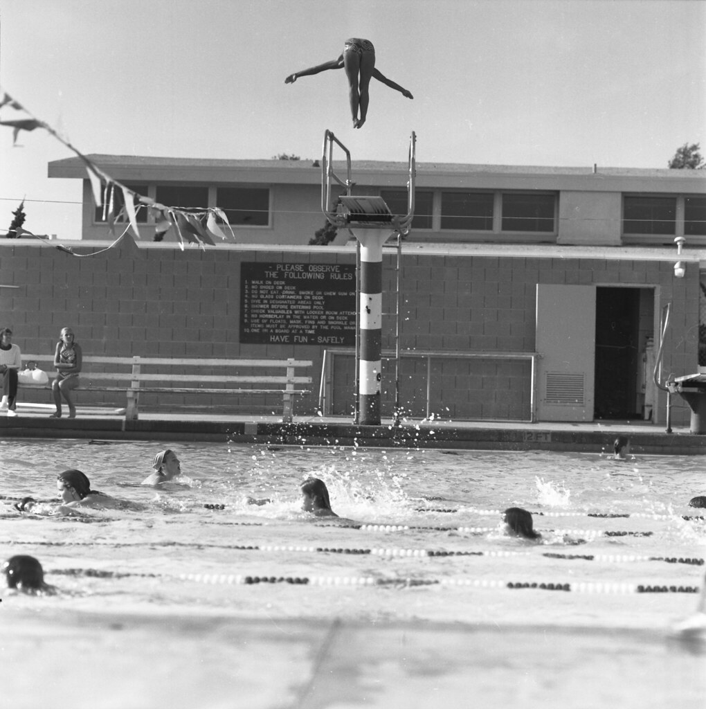 Making a Splash | Swimmers and divers practice their ...
