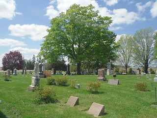 graves, trees and sky