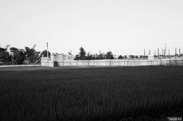 農田裡的待建物