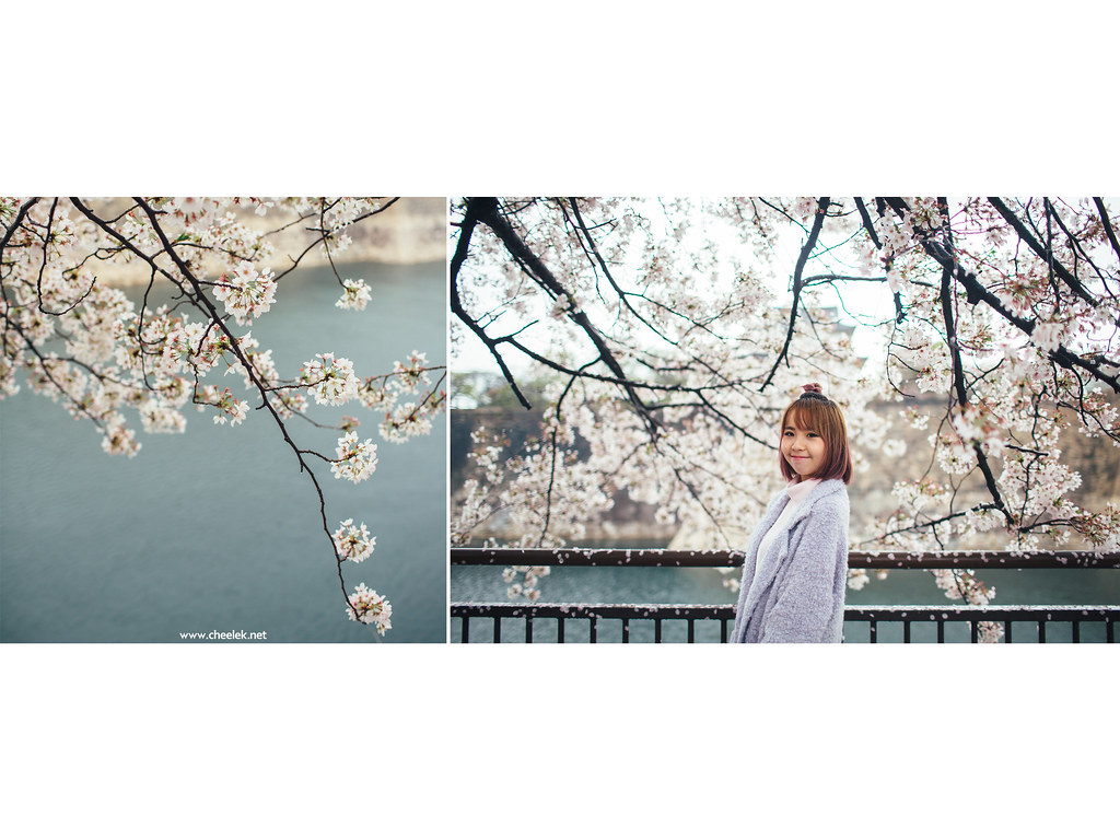 Portrait_Sakura-07