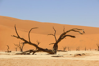 Sossusvlei National Park Namibia 13 | by Global Environment Facility (GEF)