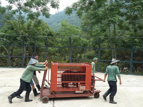 Sam being pushed to quarantine