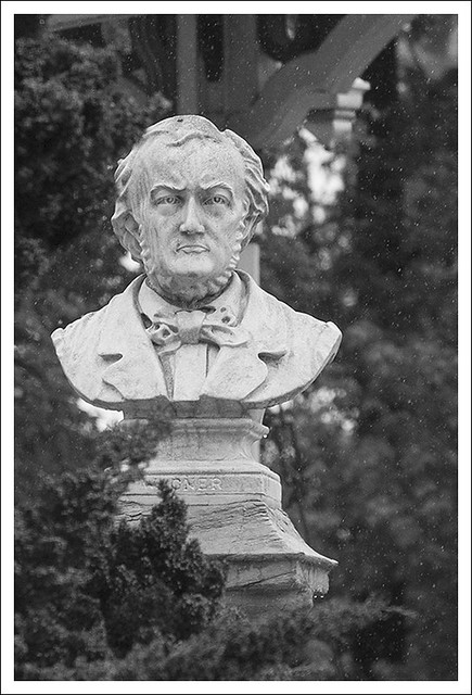 Wagner In The Rain