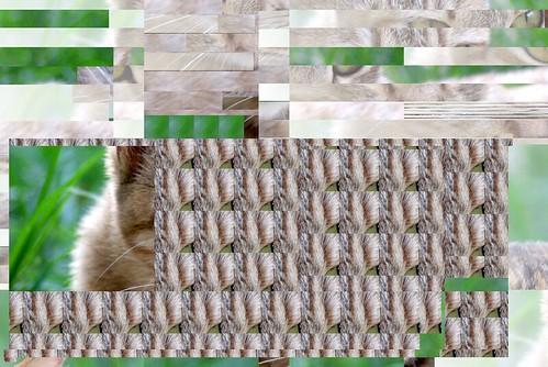Glitch GIMP